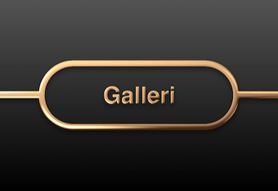 galleri, salon1400,